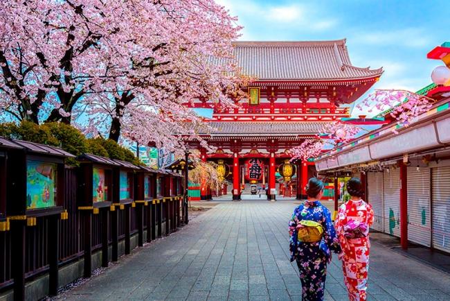 New York, Japón y Hawaii - Nap Travel